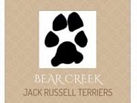 Bear Creek Jack Russell Terriers